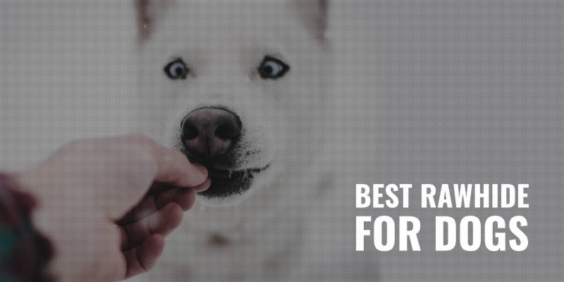 12 Best Rawhide For Dogs – Reviews, Safety, Alternatives & FAQ