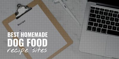 Best Homemade Dog Food Recipe Sites