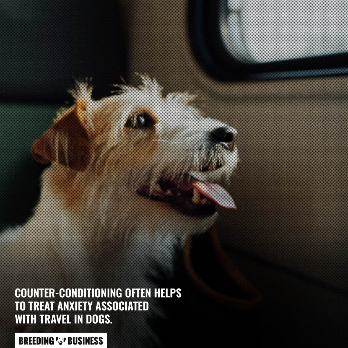 counter conditioning travel sickness