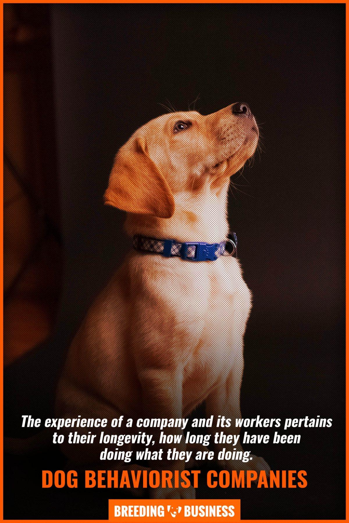 dog behaviorist companies
