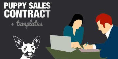 Simple Puppy Sales Contract Example