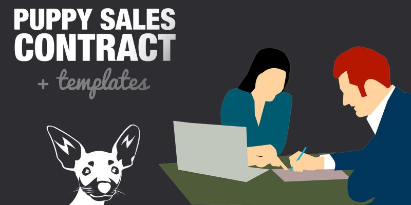 Puppy Sales Contract & Agreement Sample