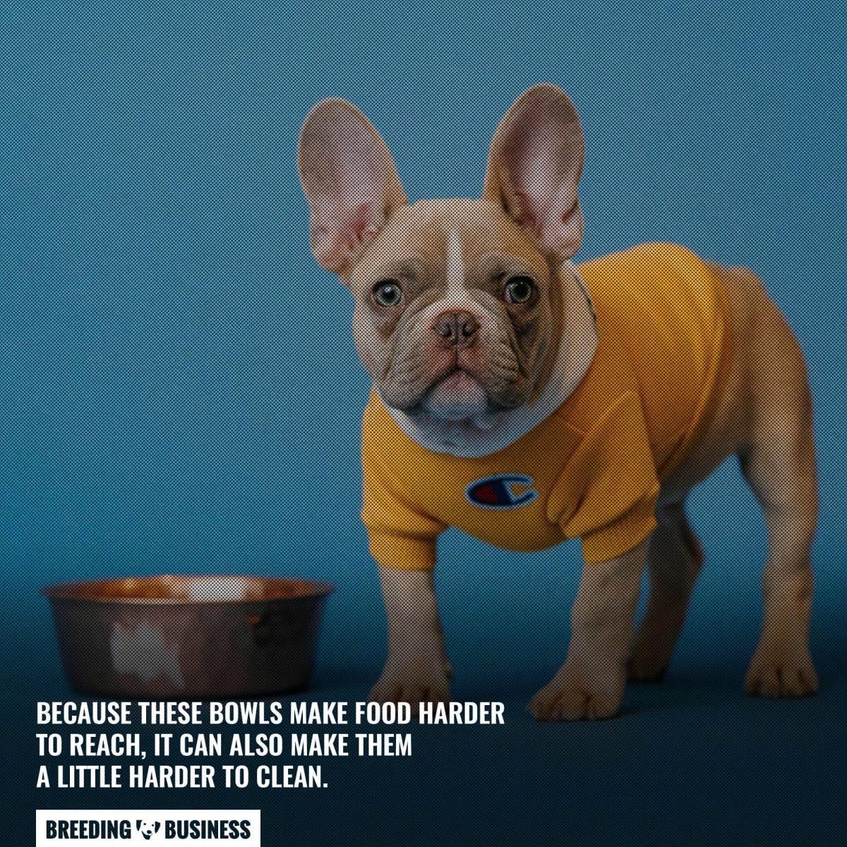 anti gulp slow feed cleanability