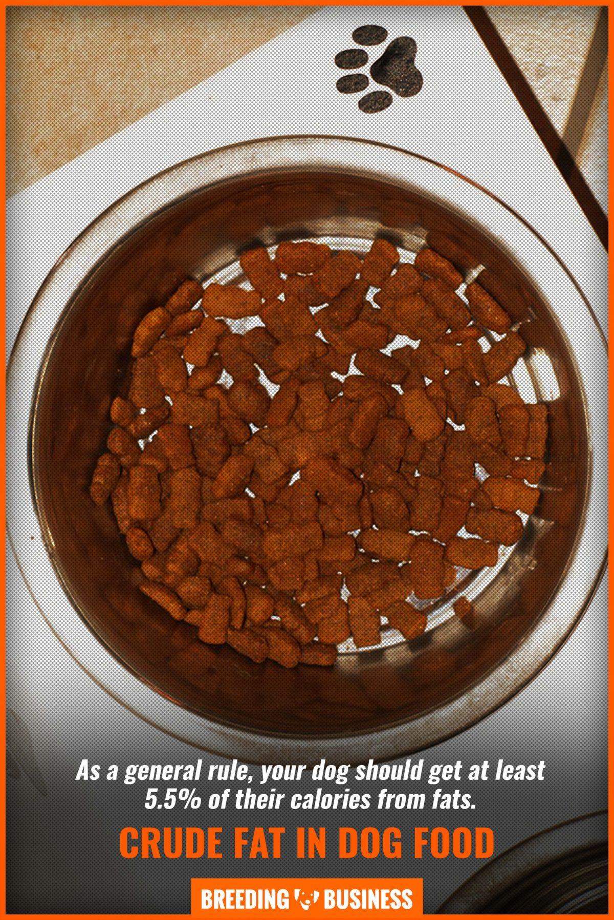 crude fat in dog food