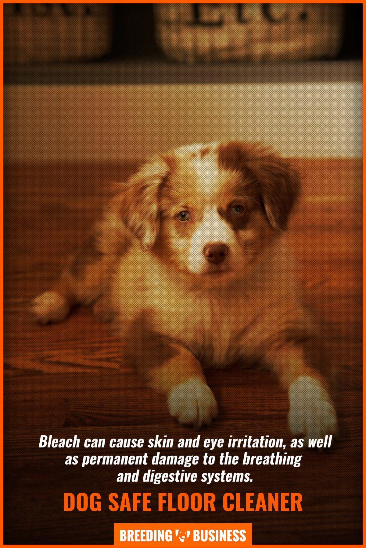 dog safe floor cleaner