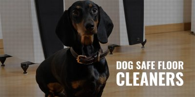Dog Safe Floor Cleaners