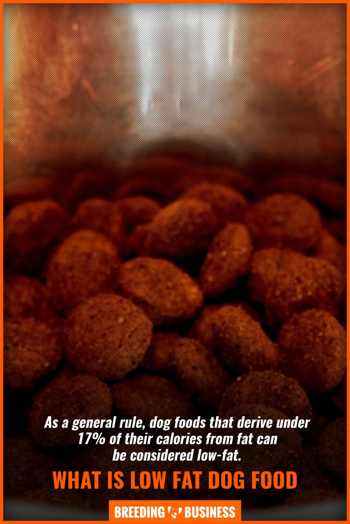 what is low fat dog food