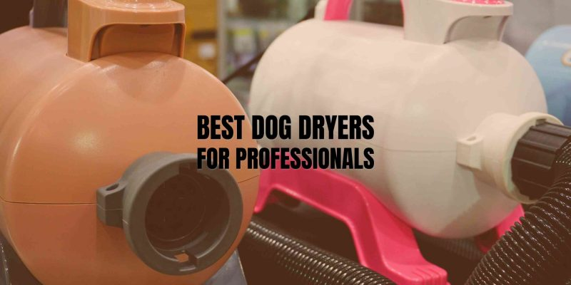 best dog dryers for professional groomers