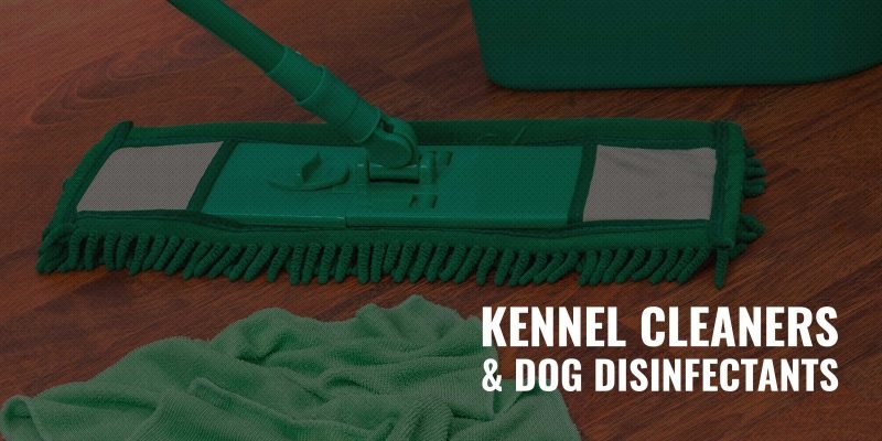 5 Best Dog Disinfectants, Kennel Cleaners & Odor-Neutralizers