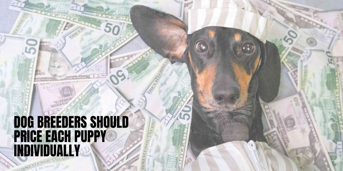 As sad as it sounds, some of your puppies are worth less than others.
