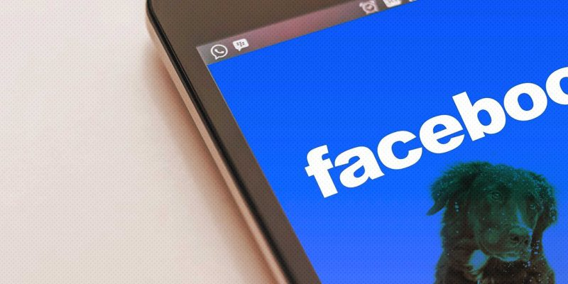 9 Reasons To Put Your Dog Breeding Business On Facebook
