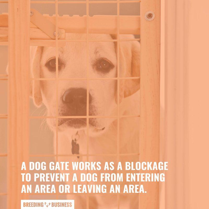 How Dog Gates Work