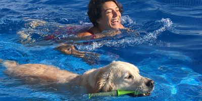 Discover activities to do with your dog during the summer!
