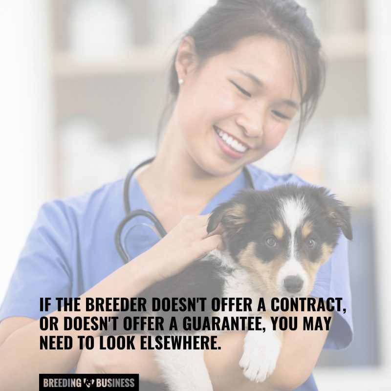 puppy health guarantee from breeders