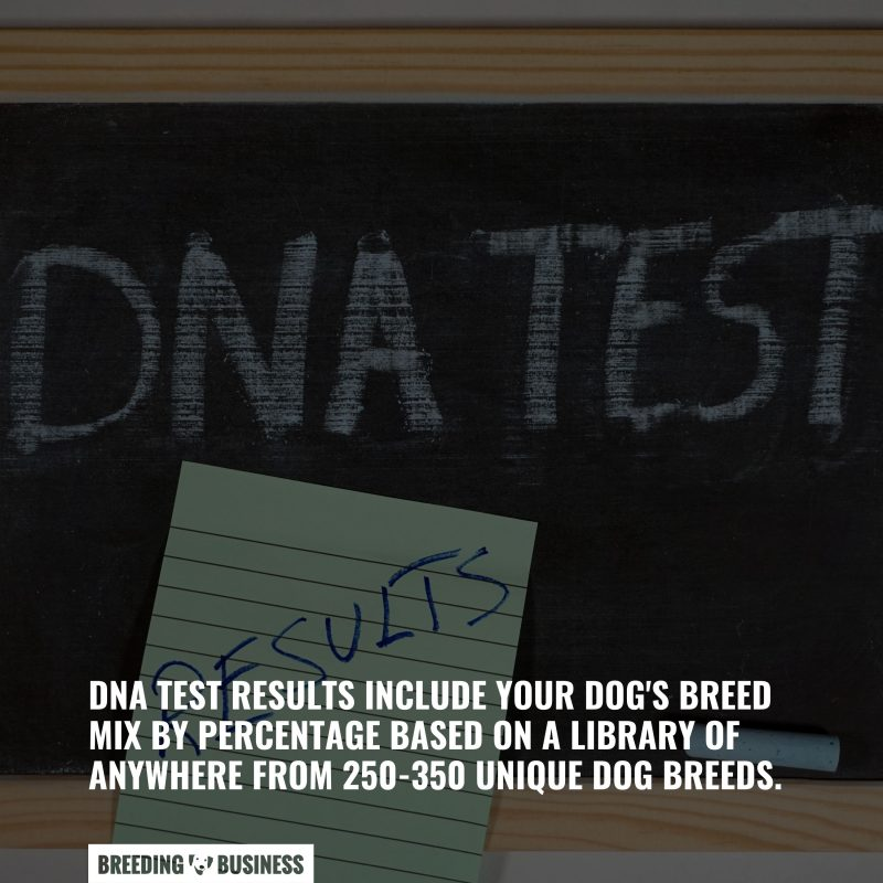 results of dna tests