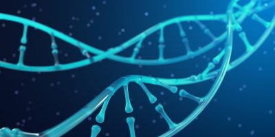Find out the purpose of dog dna tests.
