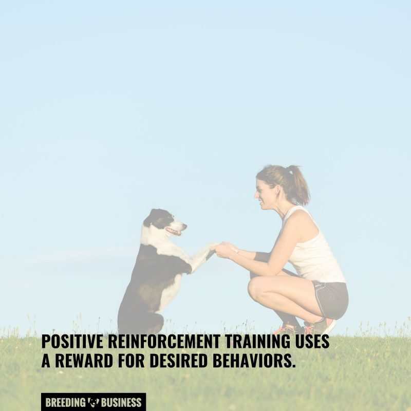 training with positive reinforcement
