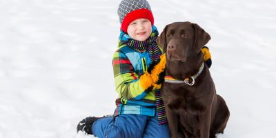 Find out the following breeds that are not for kids.