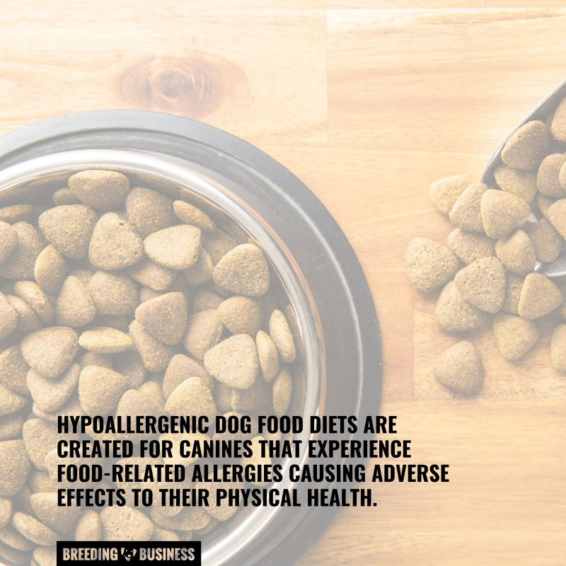 dog food that are hypoallergenic