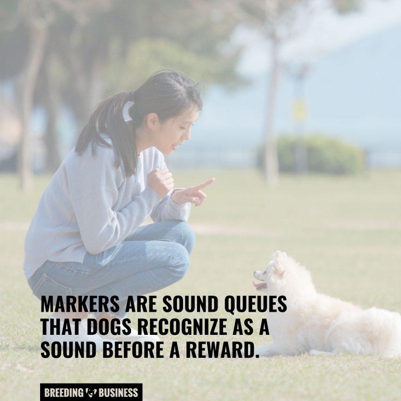 sound queue markers