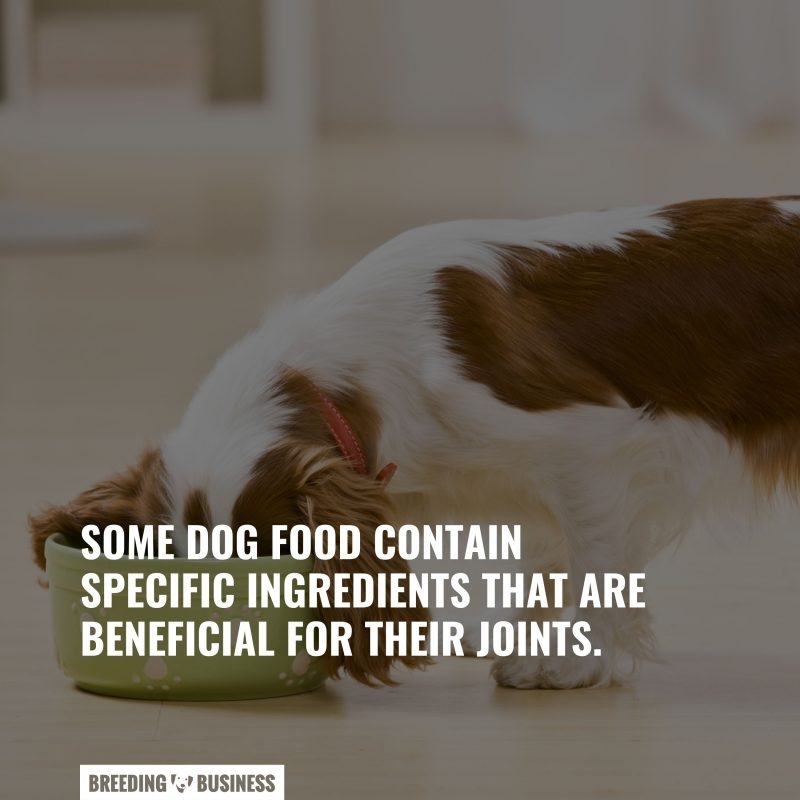 beneficial ingredients in dog food