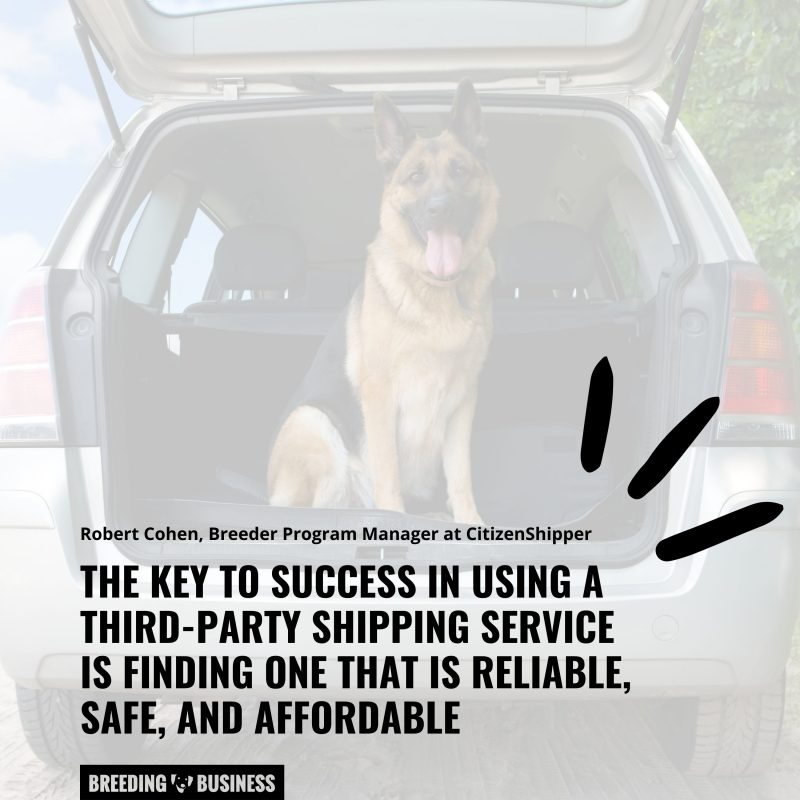 how to choose a dog ground transportation service